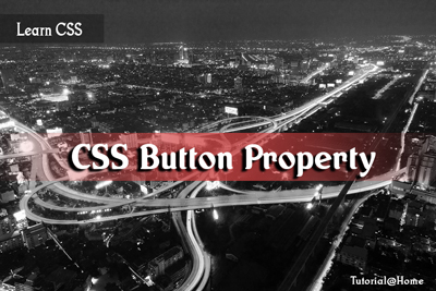 CSS Button Property