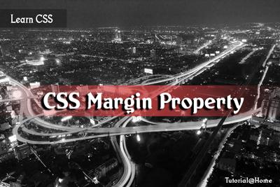 CSS Margin Property