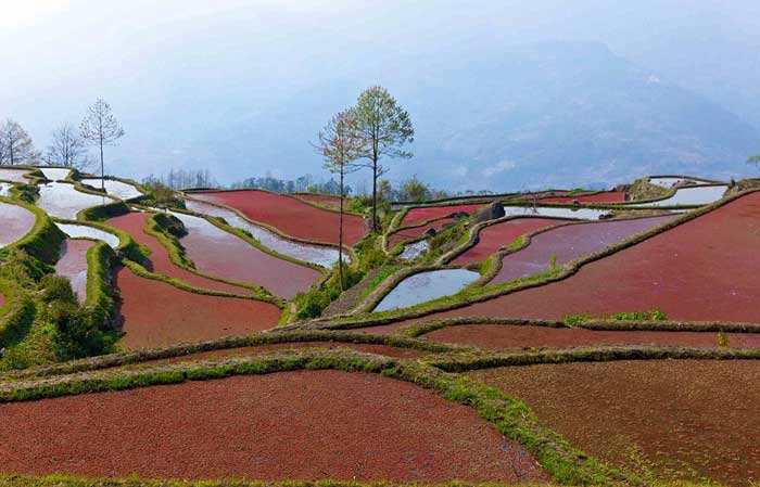 honghe-hani-rice-terraces