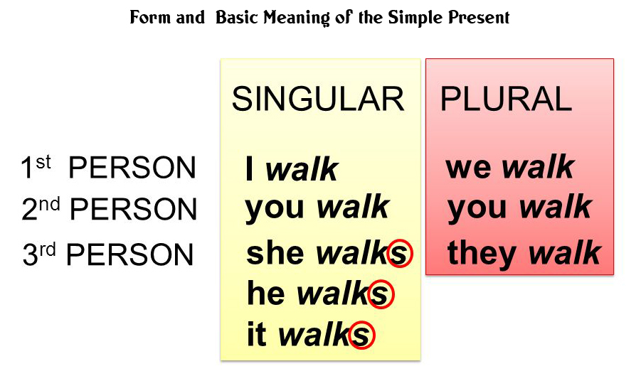Person English Grammar