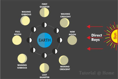 phases moon lunar month