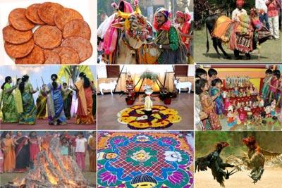 Pongal India