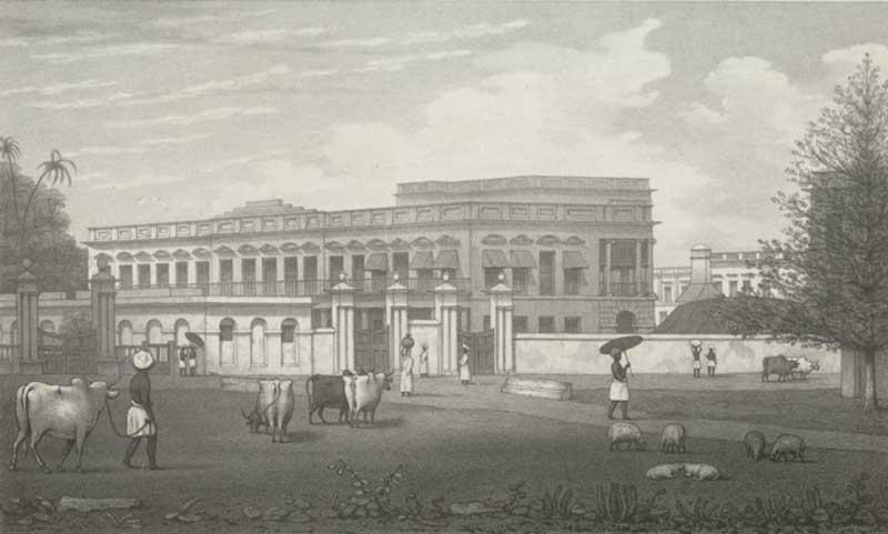 Ballard's Buildings