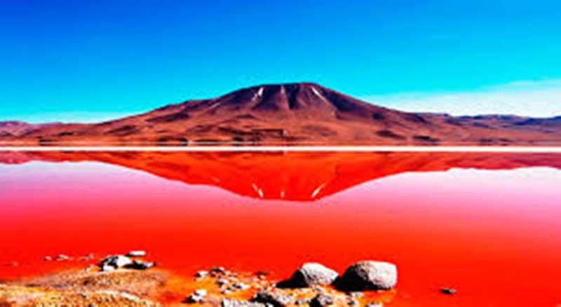 Laguna Colorado, Bolivia