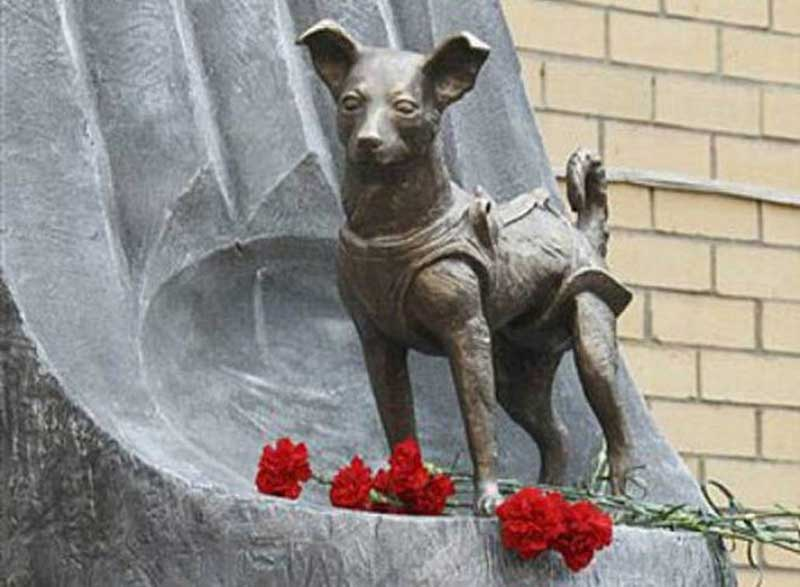 The statue of Laika, the first space dog.