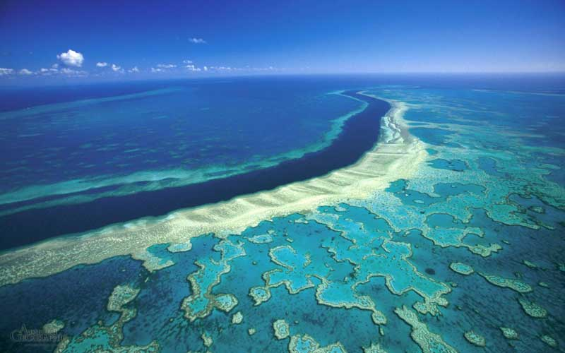 Flying above the Great Barrier Reef