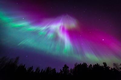 Aurora Borealis Australis