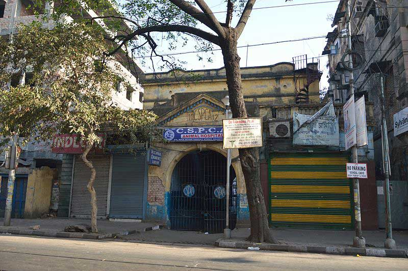 C.S.P.C.A Animal Hospital – Bow Bazar Street