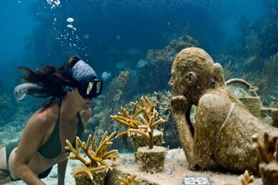 Under Water Wonders