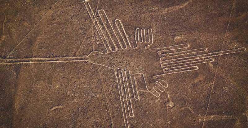 Hummingbird, The Nazca line