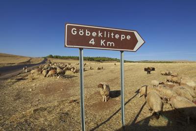 Gobekli Tepe Turkey  Heritage